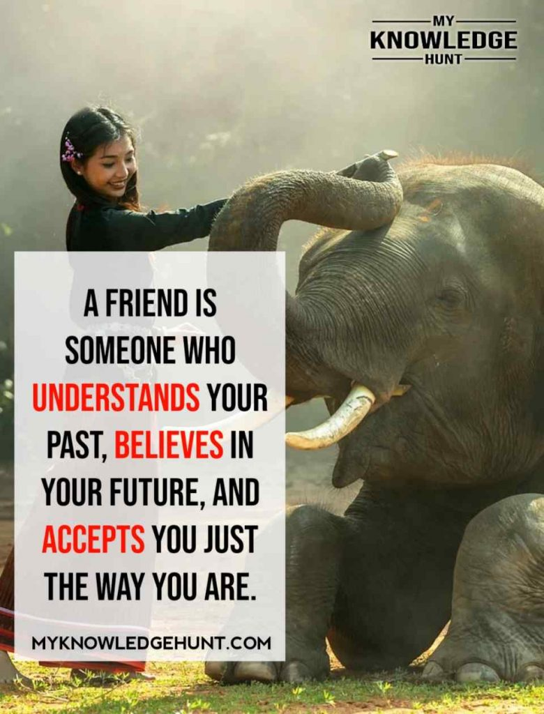 Best Friendship Quotes, Long Quotes For Best Friend, best friends forever quotes